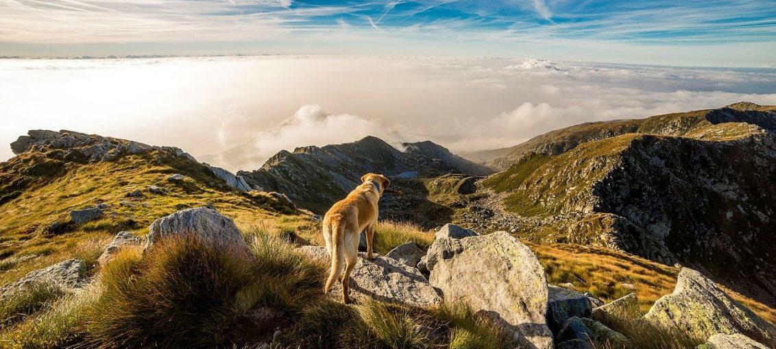 Wycieczki po górach